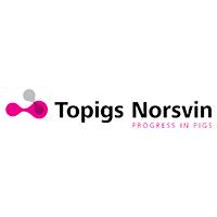 topigs-norsvin_website